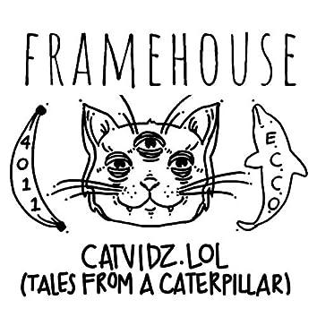 Catvidz.Lol (Tales from a Caterpillar)