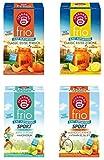 Teekanne frio 4er Eistee-Sport Mix - mit den neuen Sorten Classic Eistee Zitrone und Pfirsich, Sport Apfel-Zitrone und Mango-Orange mit Vitaminen (4 x 45g)