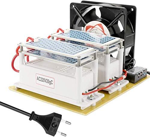 Buzhidao Generador Ozono,Ozonizador Ionizador Generador Ozono Doméstico Purificador Portátil de cerámica Doble Placa de Larga Vida útil integrada Ozonizador Purificador de Agua Aire 20 g