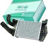 D2P 6302072, 6302076, 13212402, 63 Radiateur Intercooler, Ladeluftkühler, refroidisseu