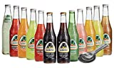 Jarritos Mexican All Natural Fruit Flavored Soft Drink Come With A Free Measuring Spoon Pack of 12: 2 X Cola, 1 X Sidral Mundet, Tamarind, Strawberry, Pineapple, Mango, Mandarin, Lime, Guava, GrapeFruit, Fruit Punch Shipping w/ Pulp Beer Shipper For ...