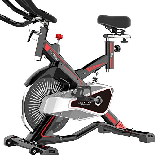 FASFSAF Indoor Cycling Bike Stationary - Cycle Bike with Ipad Mount &Comfortable Seat Cushion