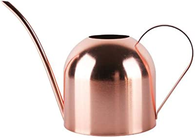 E.Palace Stainless Steel Water Can for Indoor Plants and Garden 33 OZ Copper