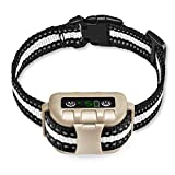 Best Dog Bark Collars - Bark Collar No Bark Collar Rechargeable Anti bark Review
