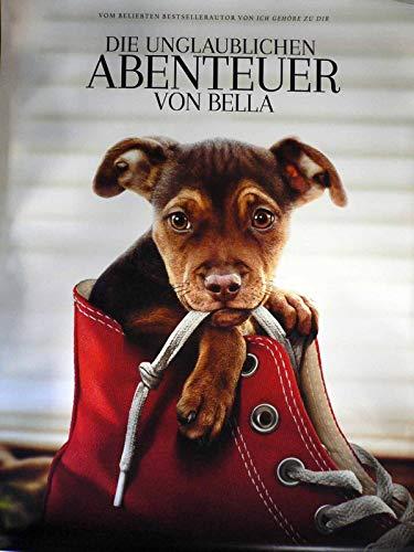 Die unglaublichen Abenteuer von Bella - Teaser - Filmposter 120x80cm gerollt