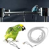 6m Parrot Bird Arnés Correa Anti-mordida Cuerda de entrenamiento de vuelo al aire libre Suministros para mascotas para guacamayos grises africanos Perico Conure Lovebird (Anillo de pie dia. 6.5mm)