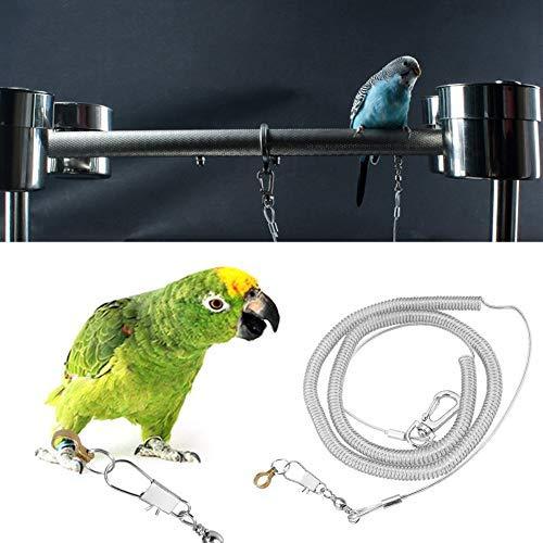 HEEPDD Hundeleine, 6 m lang, für Papageien geeignet, geeignet für kleine Vögel, afrikanisch, Grau, Kakadus, Aras, Ringhals Sittiche, Nymphensittiche, zufällige Farbe