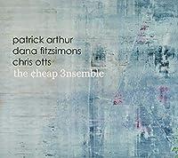The Cheap Ensemble