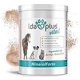 AniPlus - Kieselgur forte 400 g für Hunde unterstützt die Fell- und Hautbeschaffenheit mit wertvollem Silizium (100% biologisch)