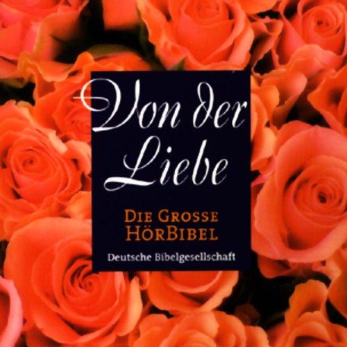 Die Große Hörbibel - Von der Liebe  cover art