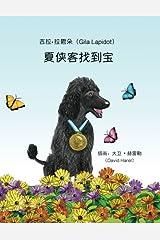 Shakel Shakelovitz Finds a Treasure (Chinese Edition) Paperback