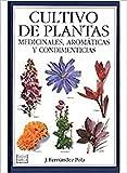 CULTIVO PLANTAS MEDICINALES, AROMÁTICAS Y CONDIMENTICIAS (GUIAS DEL NATURALISTA-PLANTAS MEDICINALES, HIERBAS Y HERBORISTERÍA)