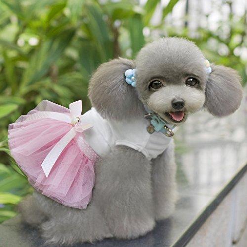 Vestido Lindo de Mascota Cachorro de Perro Vestido de Falda Encaje Princesa Pequeño Perro Rosa Medio S