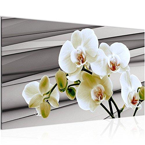 Runa Art Bild Blumen Orchidee Wandbild Vlies - Leinwand Bilder XXL Format Wandbilder Wohnzimmer Wohnung Deko Kunstdrucke Grau 1 Teilig - Made IN Germany - Fertig zum Aufhängen 202014b