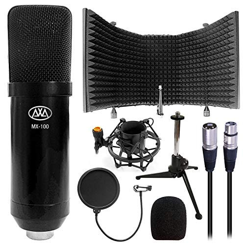 AxcessAbles SF-101 Recording Studio Microphone Isolation Shield with Vocal Pop Filter, High Density...