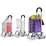 Fuyamp Carro de la compra plegable actualizado carrito de la compra escalera, subida de comestibles plegable utilidad de transporte carretes rodantes para escalar escaleras (B)