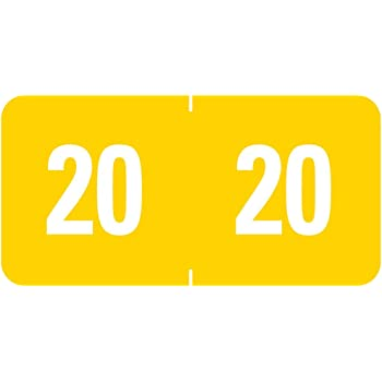 Smead ETS Color-Coded Year Labels, 2020, Yellow, 250 per Pack (67920)