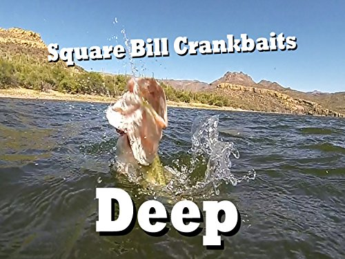 Fishing Square Bill Crankbaits in 20 feet of water