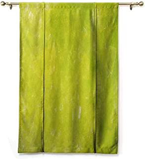 HCCJLCKS Room Dark Black Insulated Roman Blind Lime Green Grunge Hazy Color Background with Scattered Blurry Shade Effects Mystic Print Privacy Protection Apple Green W48 xL64