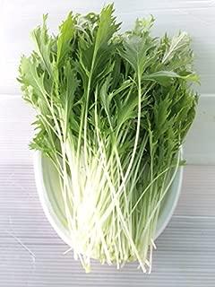 無農薬 サラダ水菜 (70g)30袋パック