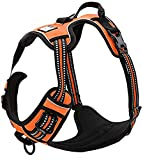 TrueLove Dog Harness TLH5651 No-pull Reflective Stitching Ensure Night Visibility, Outdoor Adventure Big Dog Harness Perfect Match Puppy Vest (S, Orange)