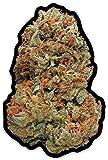 Marijuana Cannabis Sticker Big Bud Photo Realistic Nug Weed 420 Decal 4' x 2.7'