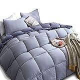 KASENTEX All Season Down Alternative Quilted Comforter Set Reversible Ultra Soft Duvet Insert Machine Washable, King, Quartz Silver/Pebble Grey