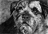 Border Terrier Art Print, Border Terrier Fan Charcoal Drawing Print, Dog Wall Art,Border Terrier Owner Gift, Dog Wall Art Print, Colorful Border Terrier Mom Decor by Oscar Jetson