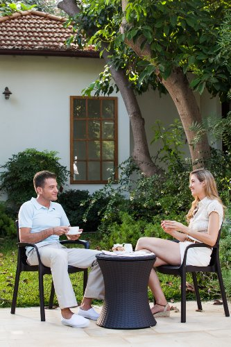 516vwBl1 EL - Keter Pacific Cool Bar - Mesa nevera para jardín, Color Marrón