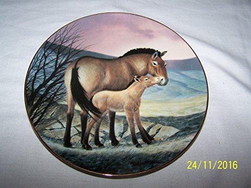 Bradex Last Of Their Kind Przewalskis Horse Will Nelson Teller