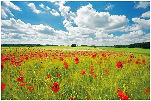 Wallario Glasbild Grüne Wiese mit Mohnblumen - 60 x 90 cm in Premium-Qualität: Brillante Farben, freischwebende Optik