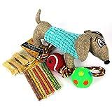 Drawer Props Bolsa Juguetes y Snacks Perros Medianos y Grandes - 14 Unidades de Chuches y Golosinas - 3 Juguetes Que harán Feliz a tu Cachorro