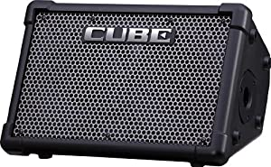 Roland Cube Street Ex Battery-Powered Portable Stereo Amplifier, for Performers On The Go, 50 Watts of Stereo Power