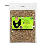 Eggcellent 1.1Lbs Non-GMO High Protein Dried Black Soldier Fly Larvae for Wild Birds, Chickens, 95%...