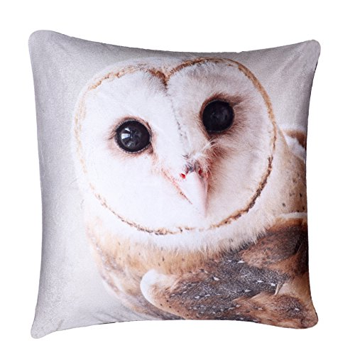 Digital Printed Plush Velvet 3D Animal Themed Square Cushion Covers (18' x 18') Cute (Plush Velvet Barn Owl)