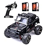 Remote Control Car, 2.4 GHz High Speed Racing Car with 2 Rechargeable Lithium Battery,Electric Cars 1:22 Scale Trucks ,RC Vehicles, Radio RC Truck High Speed Monster Crawler for Kids (Black)