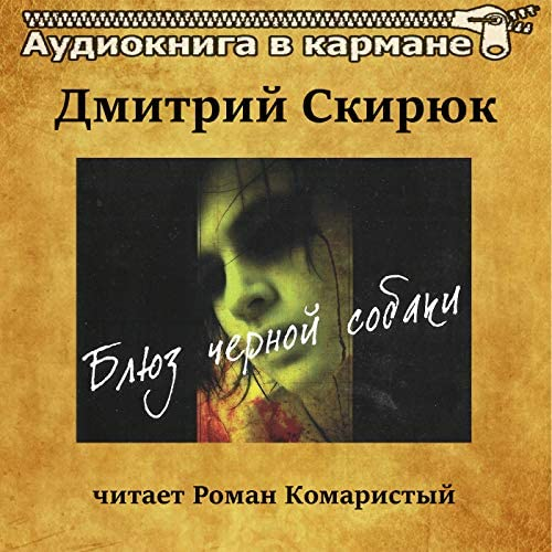 Аудиокнига в кармане & Роман Комаристый