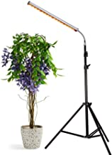 Aceple 30W Floor Stand Grow Light, LED Floor Lamp with Flexible Gooseneck, Warmwhite and Red Light Spectrum for Indoor Plants, Seedling, Hydroponic, Basement Plants to Survive Winter