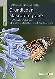 516wwtrjD9L. SL160 - Makrofotografie: 10 Bücher für Ideen und Tipps