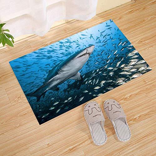 Amanda Walter Animal Marino pez tiburón Entrada Alfombra raspador de Zapatos Alfombra Lavable a máquina Alfombra de Puerta, Absorbente de Suciedad y Polvo