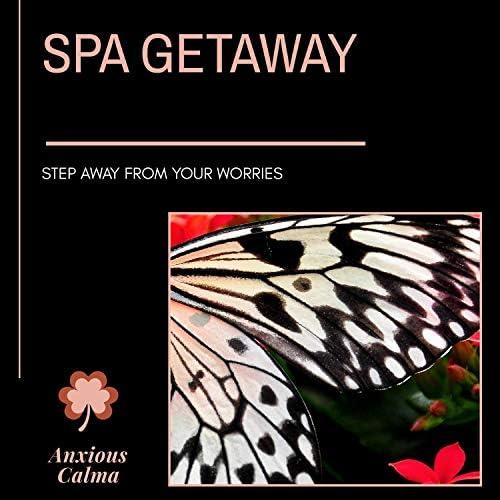 Ambient 11, Serenity Calls, Mystical Guide, Bani Mukharjee, Achyutam, Prabha, Inner Harmony, Banhi, Bithi Chatterjee, Kastor, Forest Therapy, Divyesh, Sidh Narayan, Arogya Spa, Bhumika Das, Amba Ghosh, Jaya Datta, Sanct Devotional Club, NIRUDH, The Subtled Body, Trinity Meditationn Club, Cleanse & Heal & Prime Tee