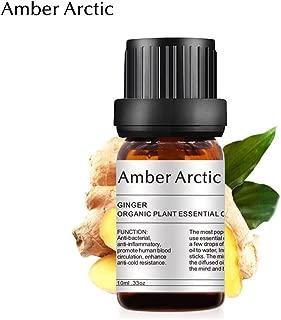 AMBER ARCTIC シトロネラ エッセンシャル オイル ディフューザー 用 100% 純粋 新鮮 有機 植物 療法 シトロネラ オイル 10Ml/0.33Oz ジンジャー
