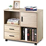 VANSPACE 2 Drawers Wood File Cabinet with Shelves, OC01 Lateral Filing Cabinet with Large...
