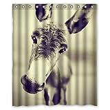 JOOCAR Design Duschvorhang, lustiger Esel, Retro-Fotokunst, wasserdichter Stoff, Badezimmer-Dekor-Set mit Haken