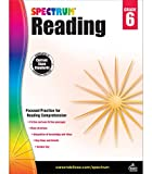 Spectrum 6th Grade Reading Workbook—State Standards for Closed Reading Comprehension, Nonfiction Fiction Passages With Answer Key for Homeschool or Classroom (174 pgs)