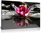 Leinwanddruck WATER LILLY FLORAL PRINT, A0 91x61cm (36x24in)