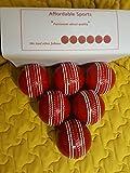 Pelota «Incrediball» para práctica de críquet;excelente ayuda para todos...