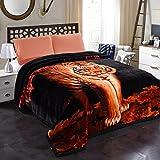 JML 10 Pounds Heavy Plush Soft Blankets for Winter, Korean Style Mink Velvet Fleece Blanket – 2...