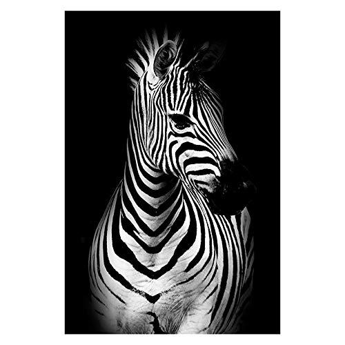 SHBKGYDL Bilder Auf Leinwand,Tiere Zebra In Den Dunklen Nordischen Poster Home Wand Kunst Dekoration Dekorative Anstriche Für Wohnzimmer Schlafzimmer Restaurant Veranda Gehweg Esszimmer