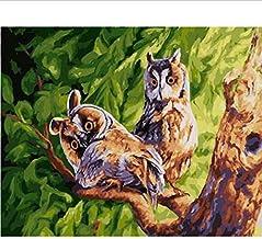 Frameloze Schilderen op Nummers Kleurplaten voor Home Decor Muur Decor Canvas Schilderen 40 * 50 Cm Uil Paar